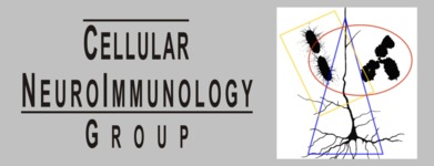 Smaller_cellular_neuroimmunology_group
