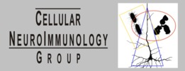 Smallest_cellular_neuroimmunology_group